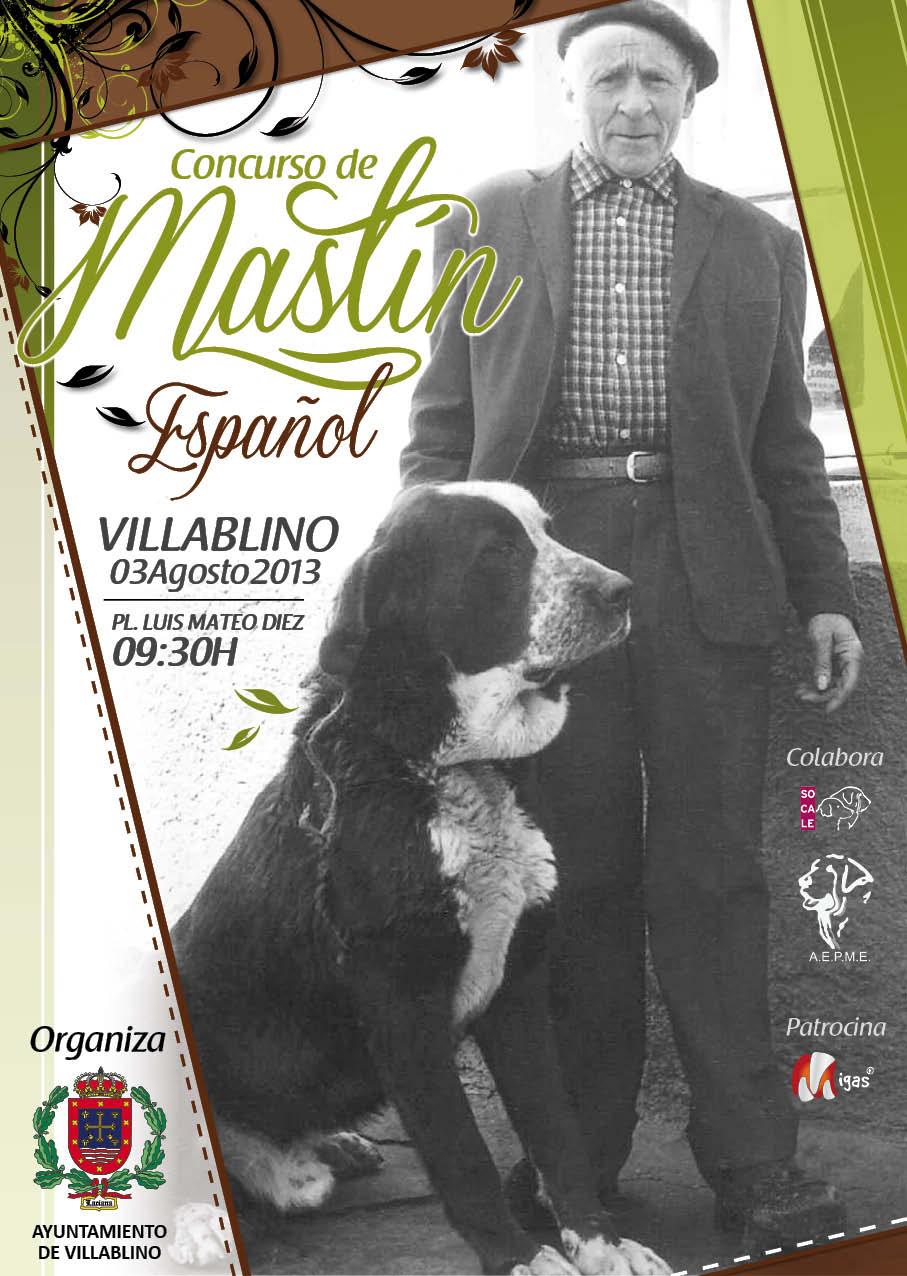 Villablino 2013