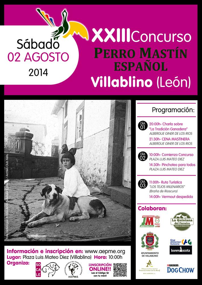 CARTEL CONCURSO VILLABLINO 2014 digital