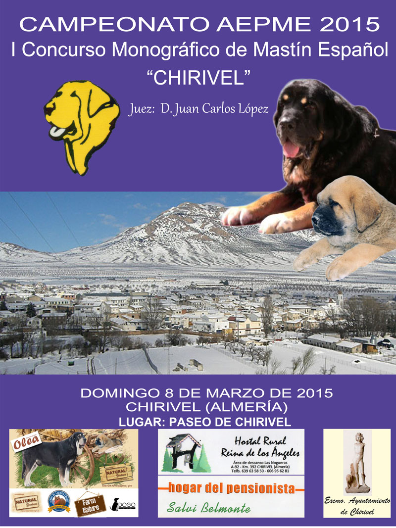 I Concurso Chirivel 2015----