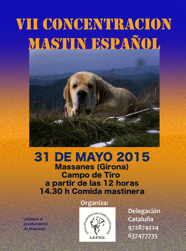 massanes 2015