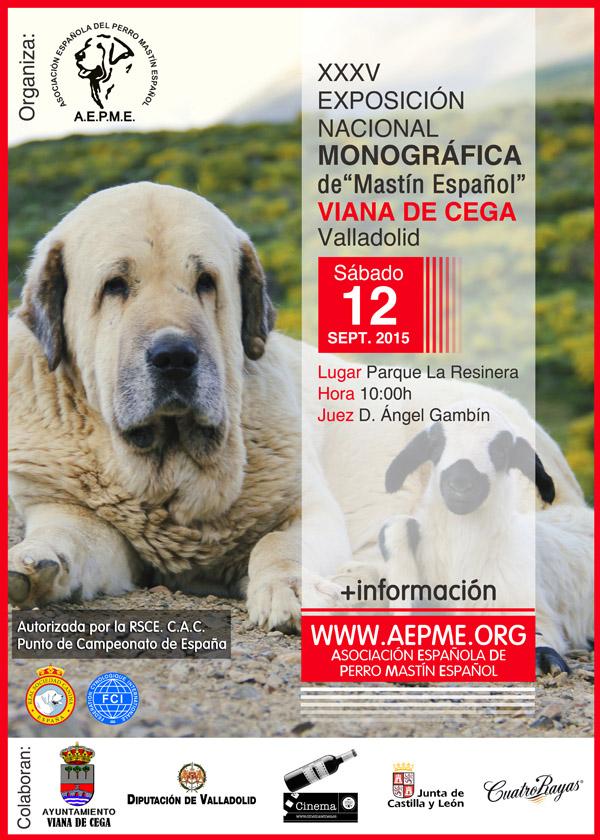 cartel vianadecega2015 2