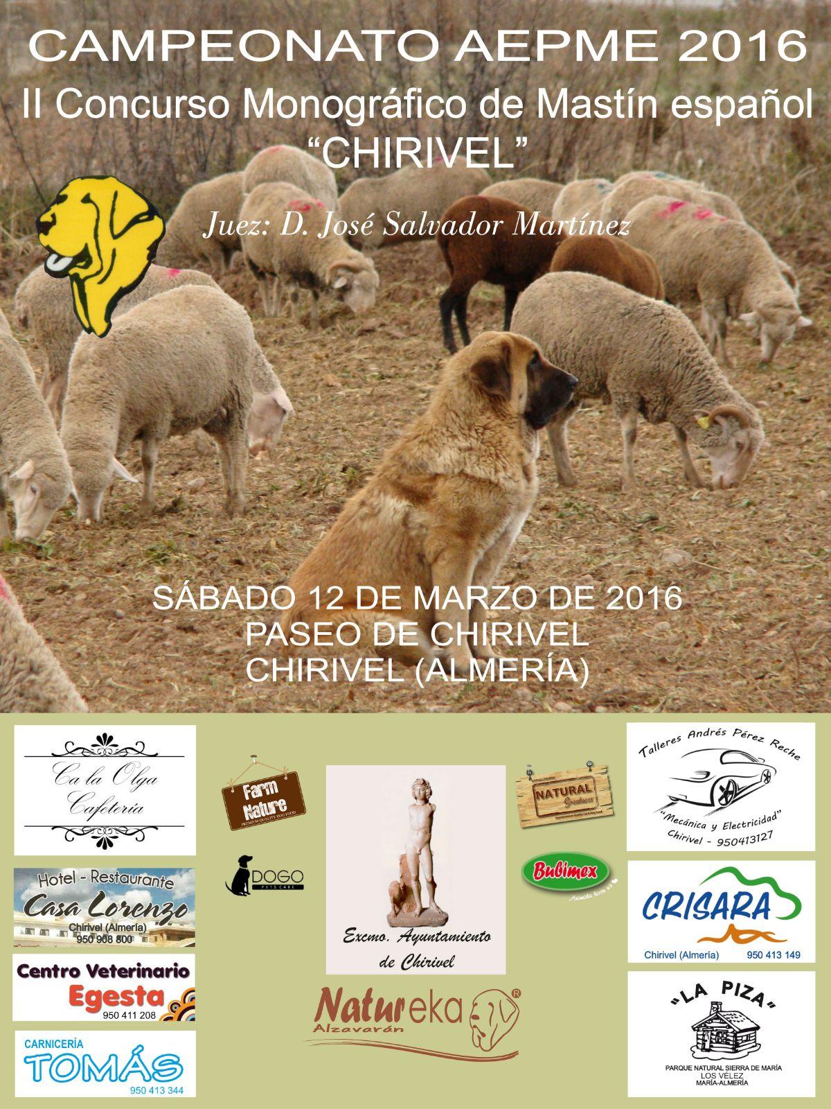 Chirivel 2016 definitivo