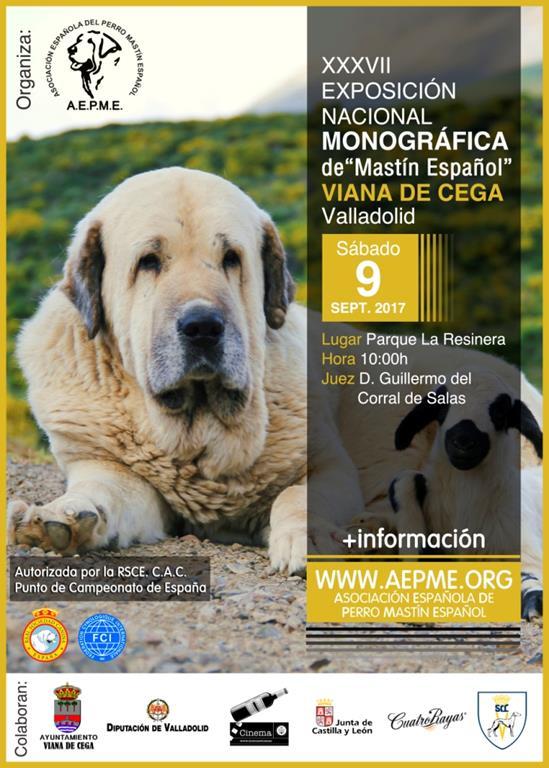 XXXVII Exposición Monográfica Nacional con C.A.C.,  Viana de Cega 2017