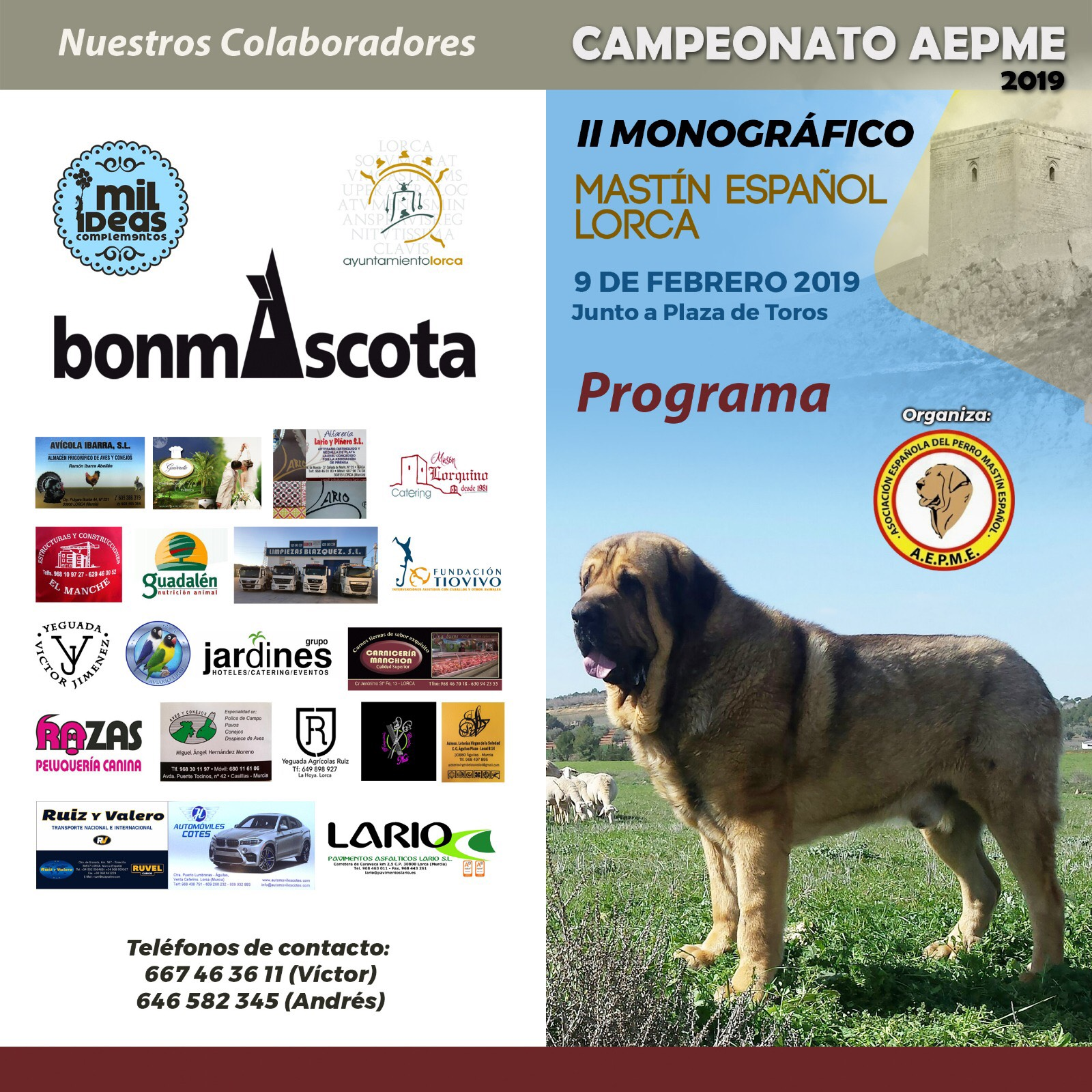 Campeonato Lorca 2019