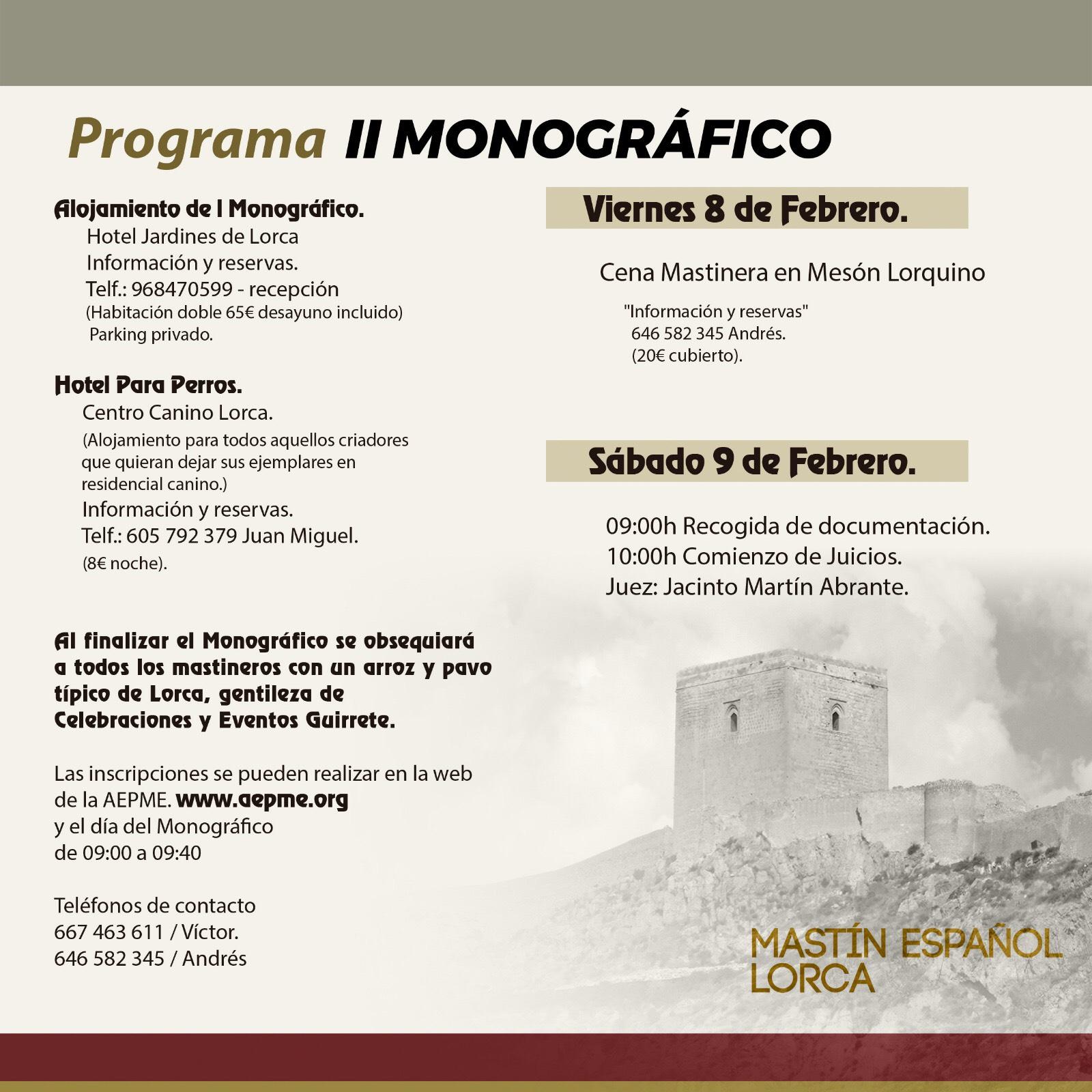 Concurso Lorca 2019